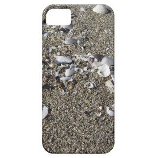 Seashells on sand. Summer beach background iPhone 5 Covers