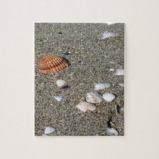 Seashells on sand. Summer beach background Jigsaw Puzzle