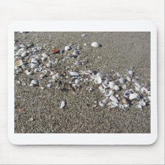 Seashells on sand. Summer beach background Mouse Pad