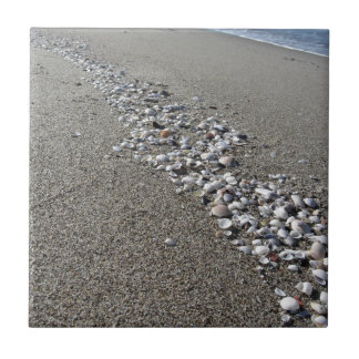 Seashells on sand. Summer beach background Small Square Tile