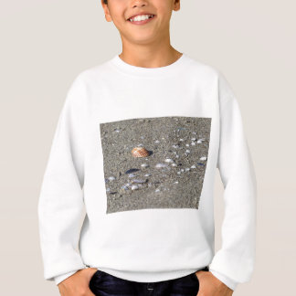 Seashells on sand. Summer beach background Sweatshirt