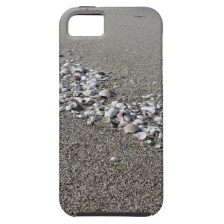 Seashells on sand Summer beach background Top view iPhone 5 Case