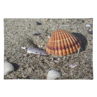 Seashells on sand Summer beach background Top view Placemat