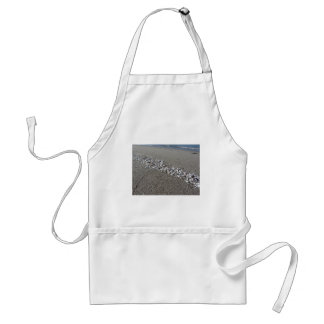 Seashells on sand Summer beach background Top view Standard Apron