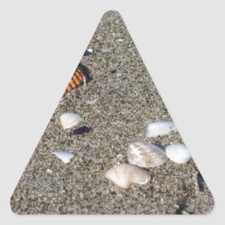 Seashells on sand. Summer beach background Triangle Sticker