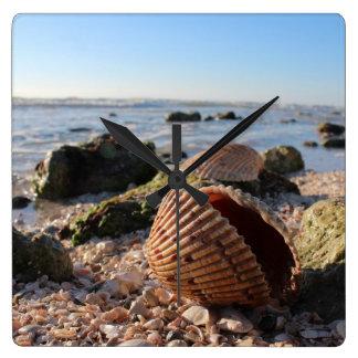 Seashells on the beach in Florida wall clock