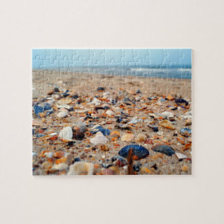 Seashells on the Beach Puzzle