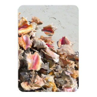"Seashells on the Beach | Turks and Caicos Photo 3.5"" X 5"" Invitation Card"