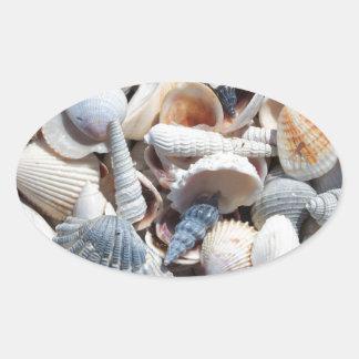 Seashells Oval Sticker