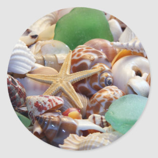 Seashells Starfish & Beach Glass Stickers