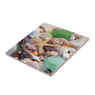 Seashells & Starfish Tile