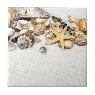 Seashells Tile