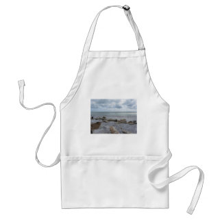 Seashore of beach with sailboats on the horizon standard apron