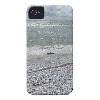 Seashore of Marina di Pisa beach in a cloudy day iPhone 4 Cases