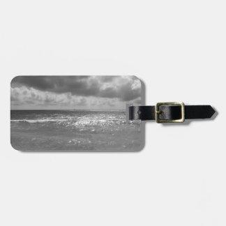 Seashore of Marina di Pisa beach in a cloudy day Luggage Tag