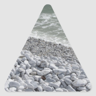 Seashore of Marina di Pisa beach in a cloudy day Triangle Sticker
