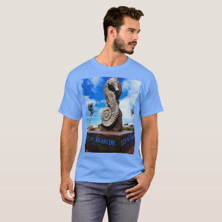 Seaside,California T-Shirt