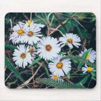 Seaside Daisies | Mousepad