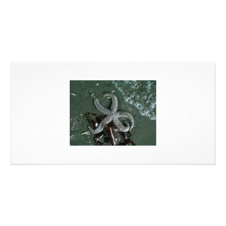 Seaside fun personalised photo card