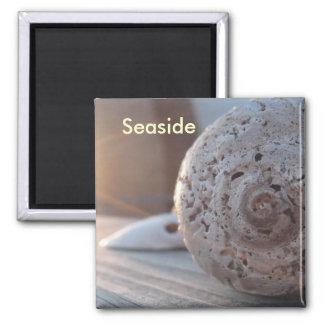 Seaside Magnet