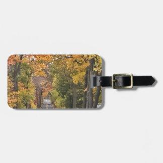 Season - Fall.jpg Luggage Tag