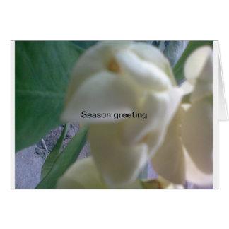 season greeting note card