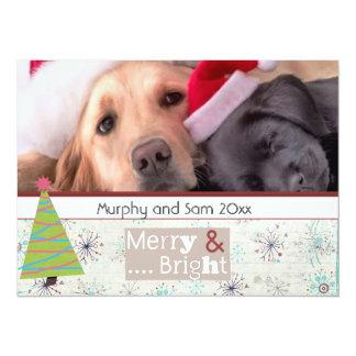 season greeting christmas pet photo cards 14 cm x 19 cm invitation card