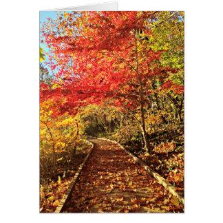 Season of Hope Card