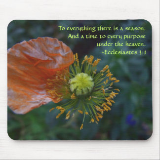 Season - Peach Petal Mousepad