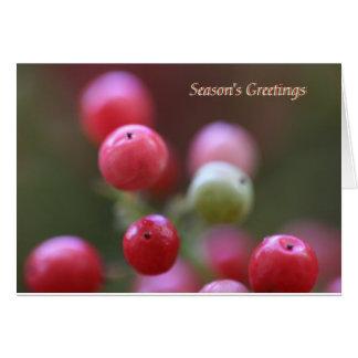 Season s Greetings Cards