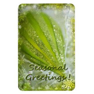 Seasonal Greetings Premium Magnet