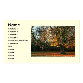 Seasonal Secrets Business/Profile Card Business Card Template