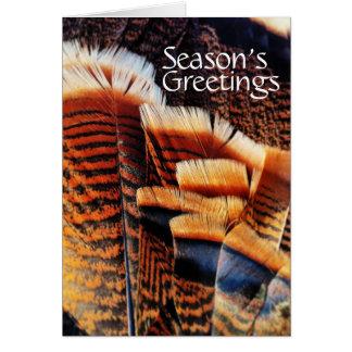 Seasonal Turkey Tail Feathers Generic Holiday Card