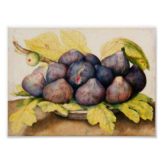 SEASON'S FRUITS / PLATE WITH FIGS AND GREEN LEAVES PRINT