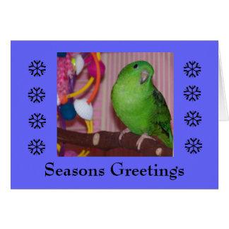 Seasons Greeting - Blank Card