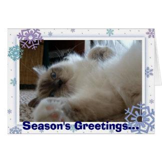Season's Greetings... Card