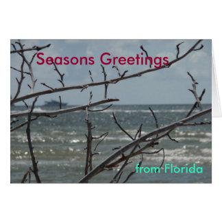 Seasons Greetings Christmas Card from Florida