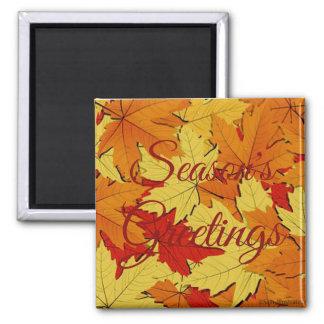 Season's Greetings Fall Leaves Pattern Magnet