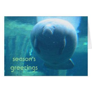 season's greetings - fat manatee card
