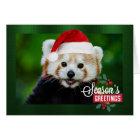 Seasons Greetings from Red Panda Santa Card