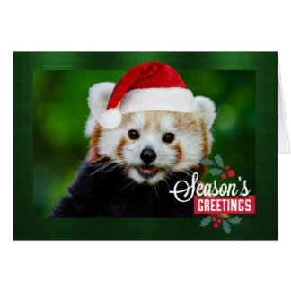 Seasons Greetings from Red Panda Santa Greeting Card
