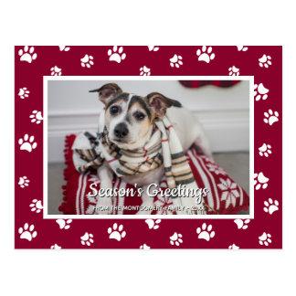 Season's Greetings! Fun White Paw Prints Dog Photo Postcard