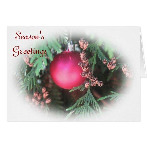 Season's Greetings Holiday Card Greeting Card