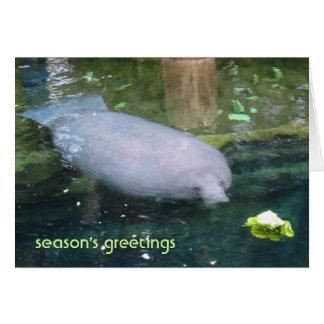 season's greetings - lettuce card