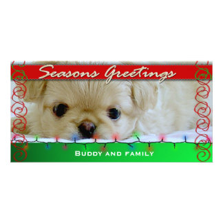 Seasons Greetings Personalized Dog photo card