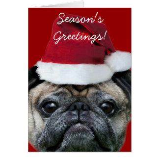 Season's Greetings pug greeting card