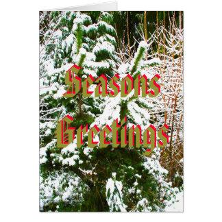 Seasons Greetings, Snow Scene Card