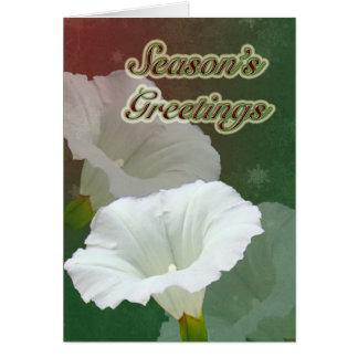 Season's Greetings - White Bindweed Card