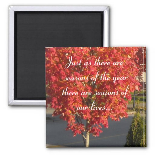 Seasons of Our Lives... Magnets
