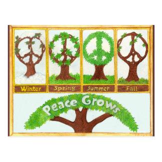 Seasons of Peace Postcard
